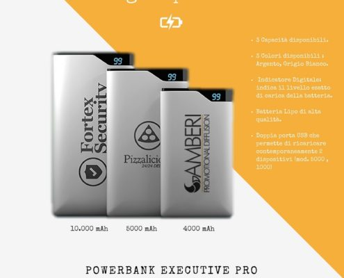 Powerbank executive pro