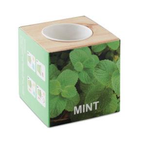mini vaso in legno con semi di menta da scrivania
