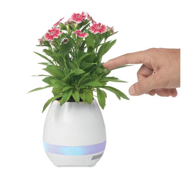vaso luminoso smart