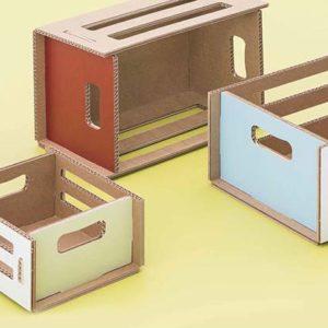 cassette in cartone